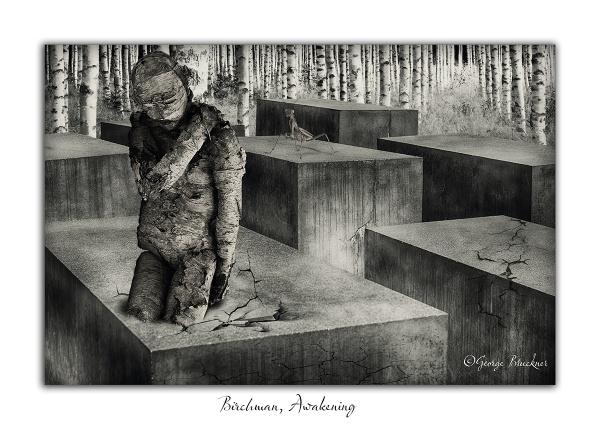 Birchman, Awakening by rusty