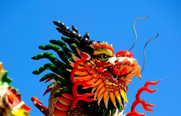 Dragons !! by Chinga