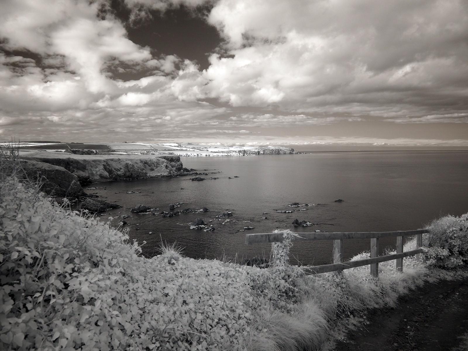 St Abbs Head across Coldingham Bay