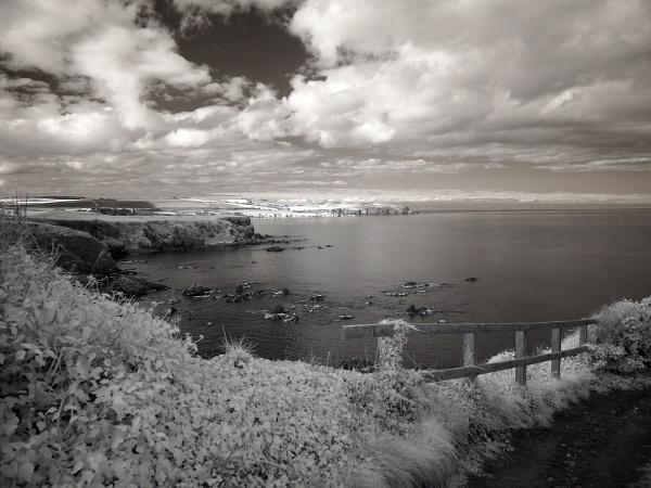 St Abbs Head across Coldingham Bay by milepost46