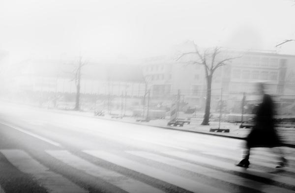 Daily Street XII by MileJanjic