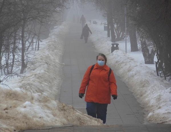 Gray season. Foggy alley by SauliusR