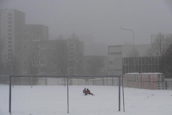 Gray season. Joy on last snow by SauliusR