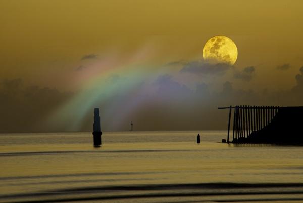 Moonrise by Peco