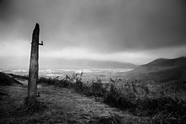 Lakeland Sentinel by Acancarter