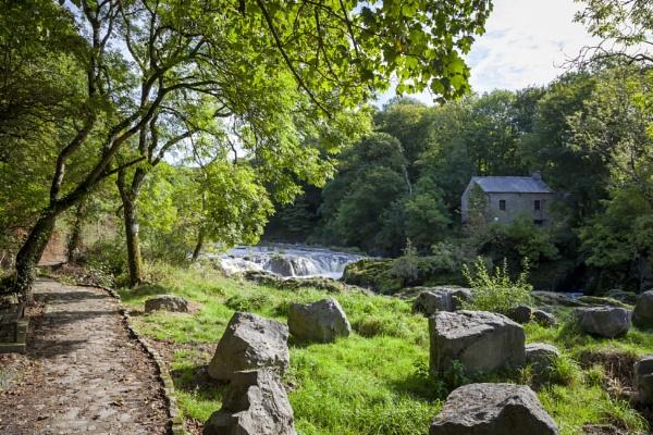 Cenarth Mill & Falls by blrphotos