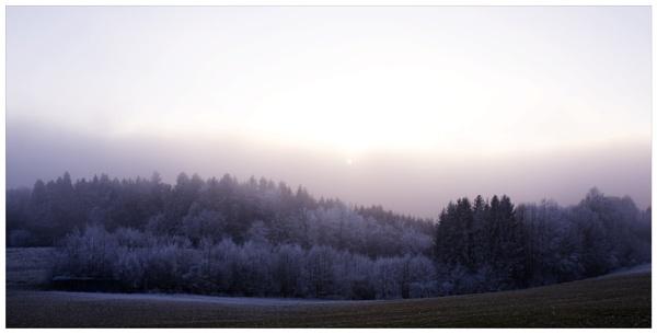 dead of winter V by bliba