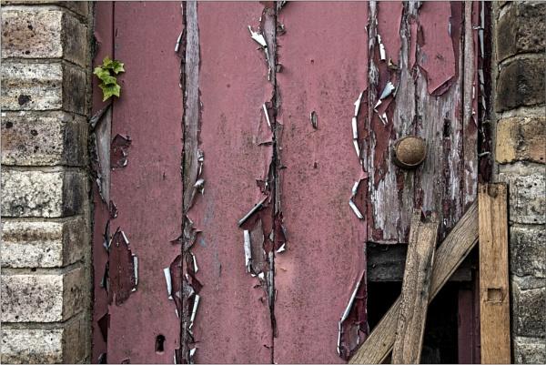 The netty door by mrswoolybill
