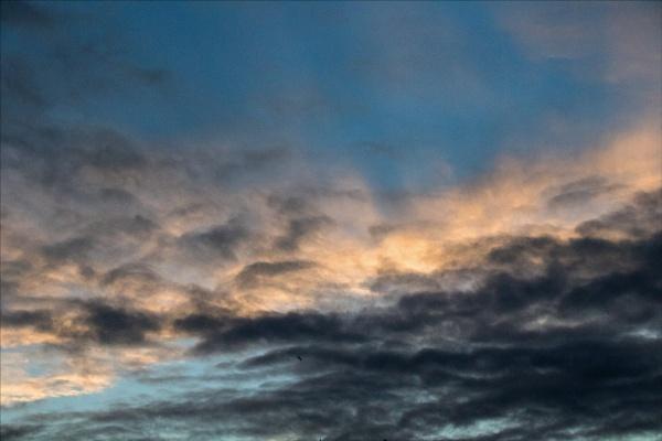Twilight by rambler