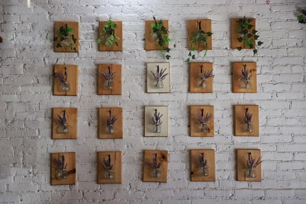 Wall Flowers by Merlin_k