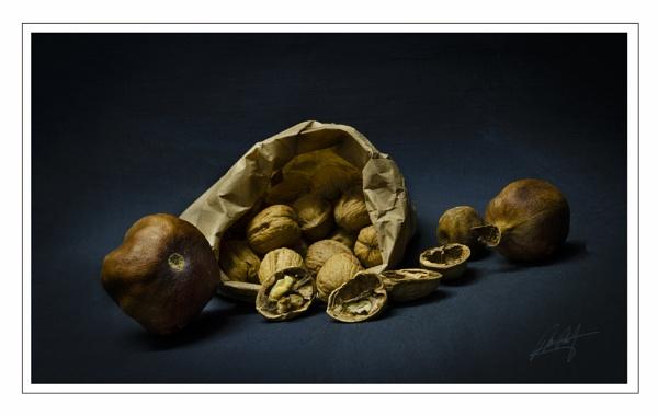 Nuts Nuts. by dusfim