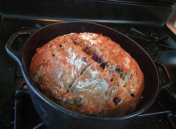 Crusty Cranberry Walnut Artisan Bread  (best viewed large) by gconant