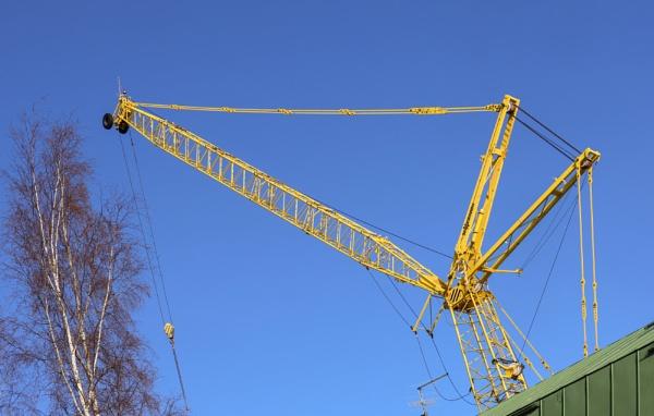 Yellow Crane by Jukka