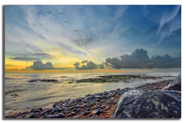Dawn by carper123