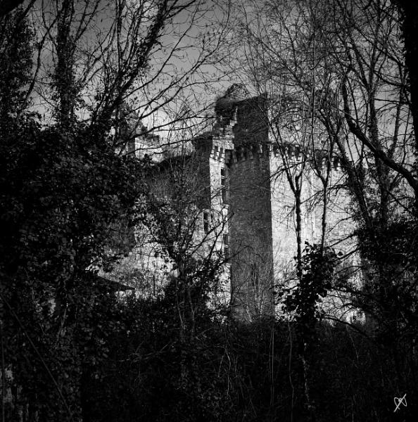 Ch Bruzac, Dordogne by chataignier