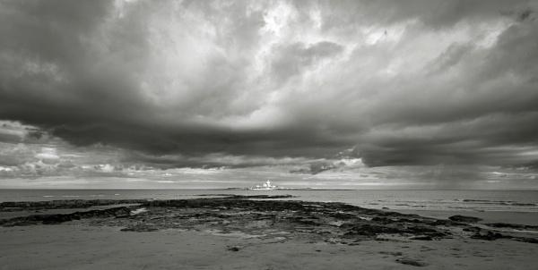 Coquet Island by flowerpower59