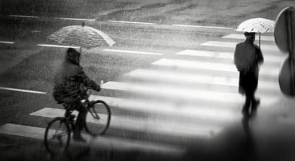 Daily Street XX by MileJanjic