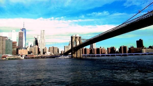 Brooklyn Bridge. New York by Don20