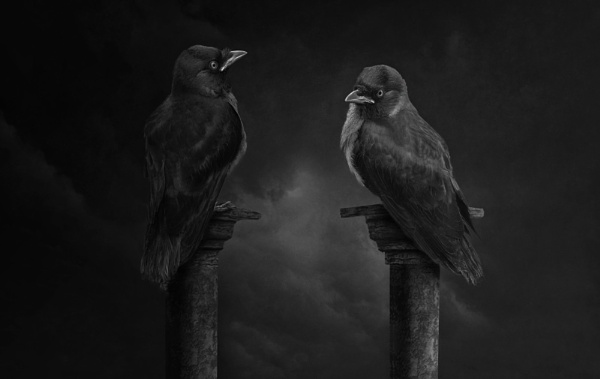 The Gatekeepers by Durante