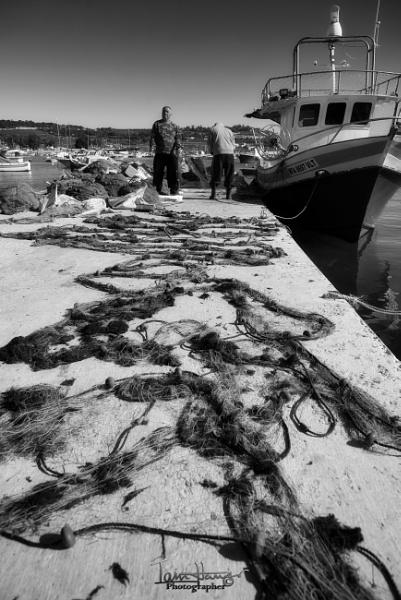 Sorting the nets by IainHamer