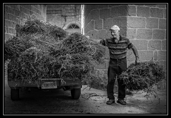 STACKING FODDER ----- GHARB GOZO by Edcat55