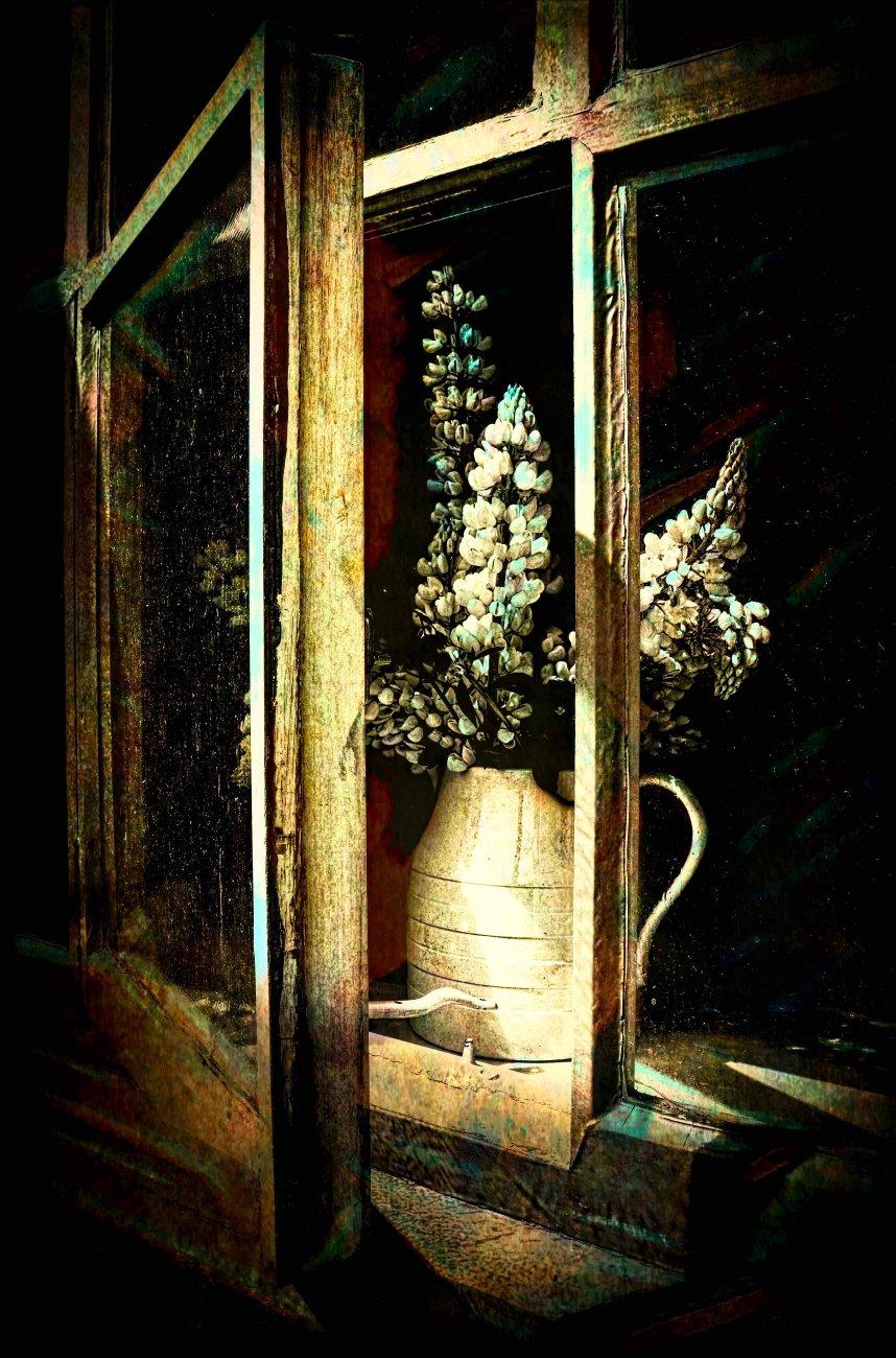 Flowers in a Dirty Window