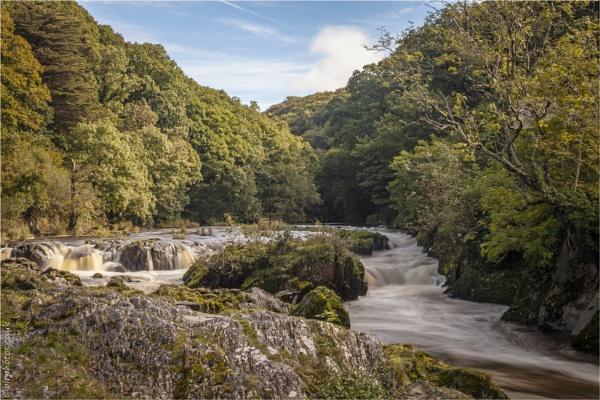 Cenarth Falls by blrphotos