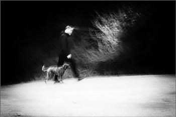 The Ghostly Dog Whisperer