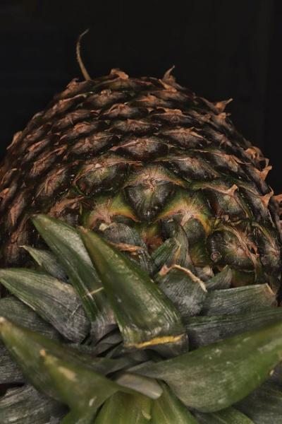 Pineapple by Merlin_k