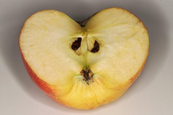 An Apple a Day by Merlin_k