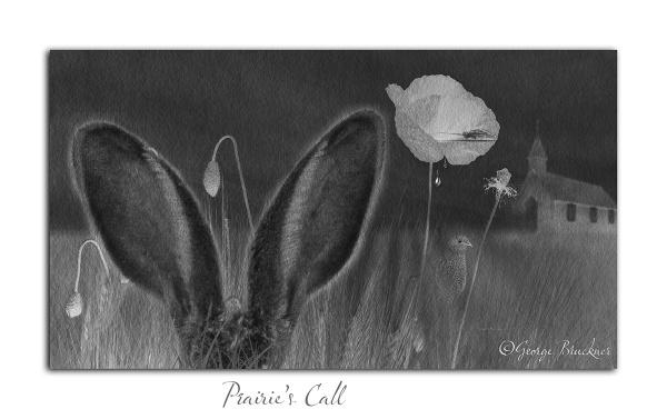 Prairie\'s Call by rusty