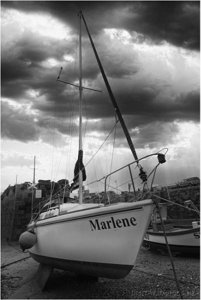 Marlene by Alan_Baseley