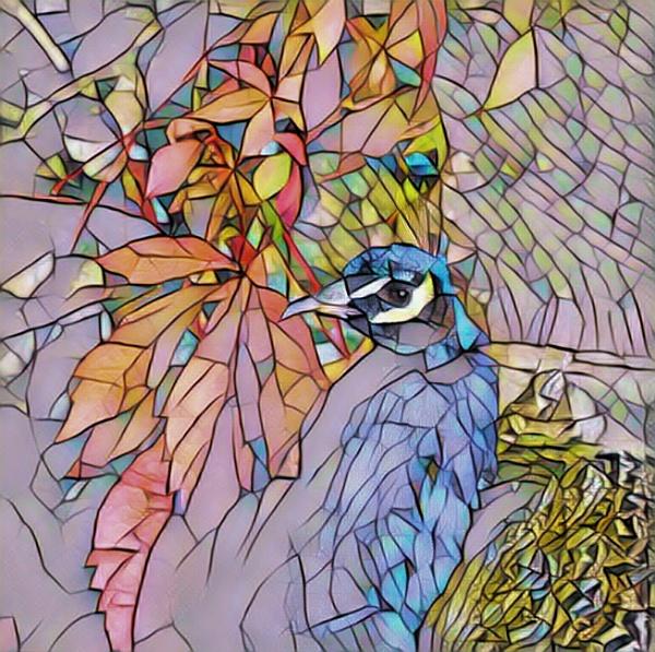 Peacock by sweetpea62