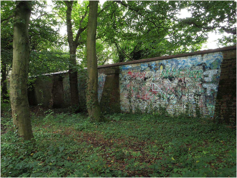 Grafitti in Astley Woods