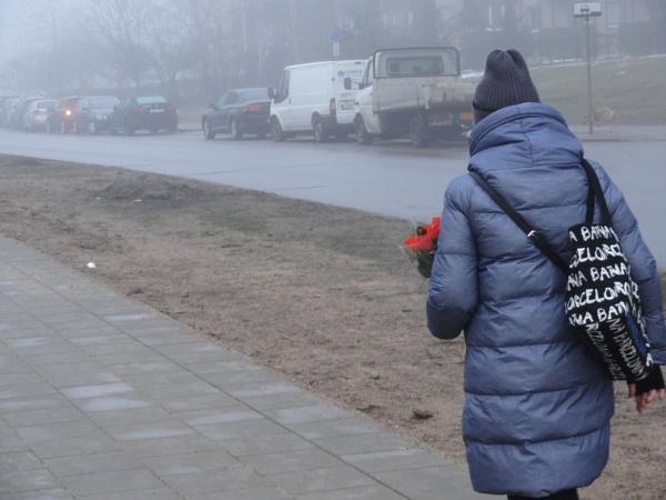 Gray season, red roses by SauliusR