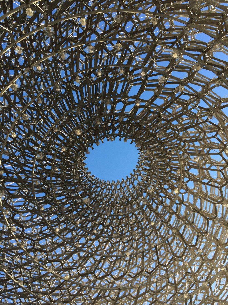 Inside the Hive Kew Gardens London