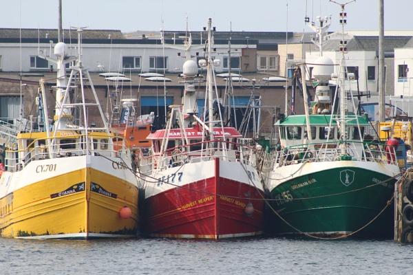 Fishing Boats, Mallaig Harbour, Scotland by topcatj