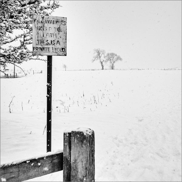 Beyond the Stile by woolybill1