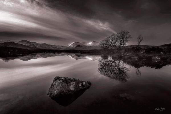 On Reflection by douglasR