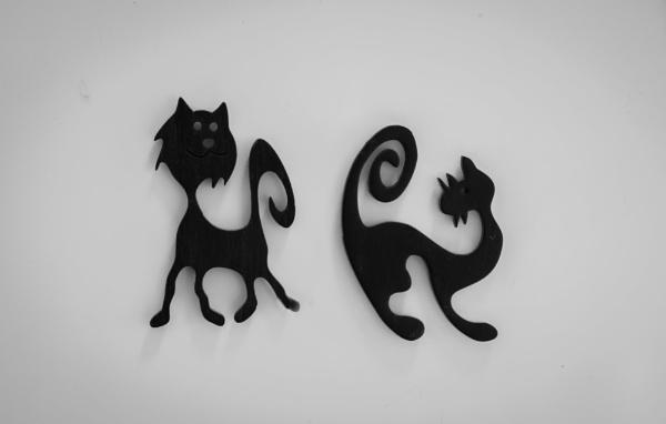 Mustat kissat. by Jukka