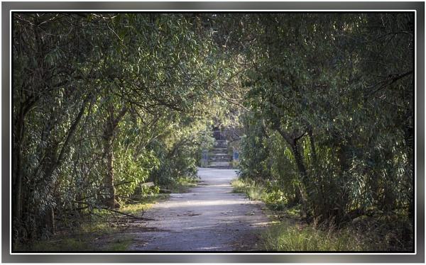 Through the park by nklakor
