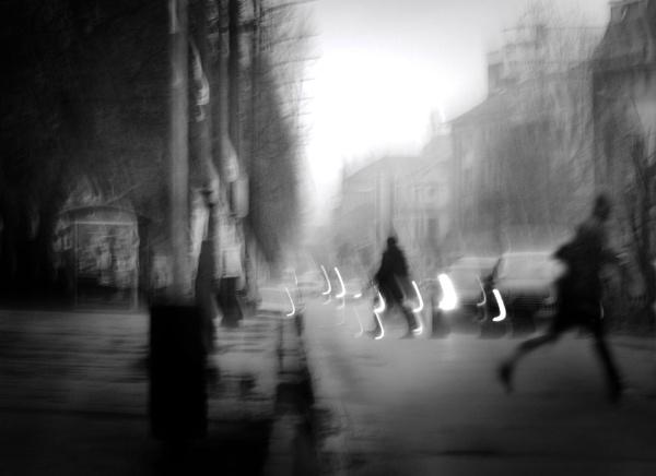 Daily Street XXX by MileJanjic