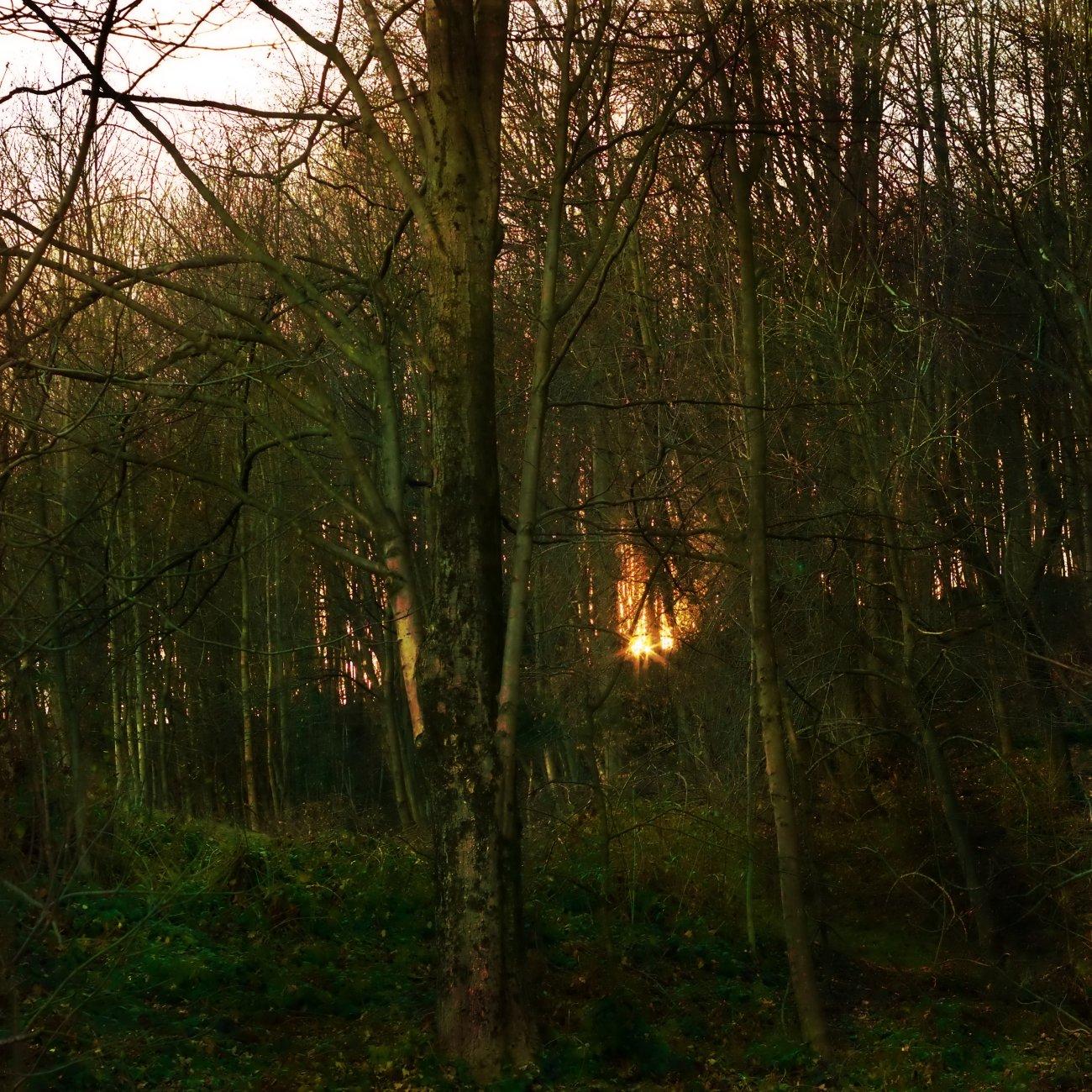 Late Winter Sunset