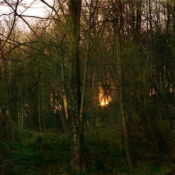 Late Winter Sunset by LoryC