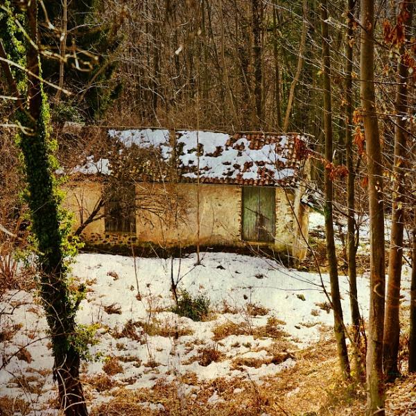 The Cold Season by LoryC