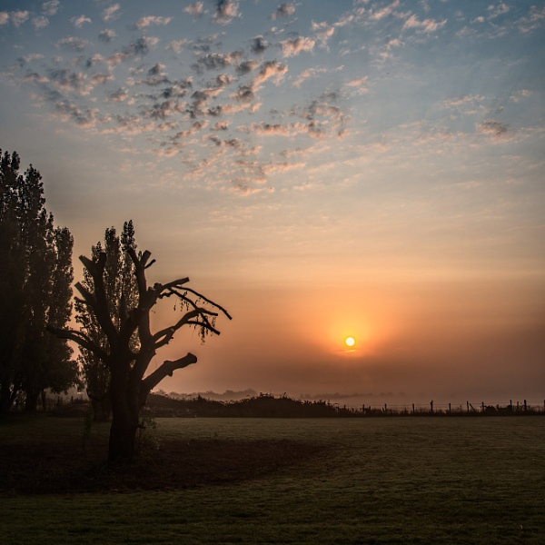 Sunrise by Mable