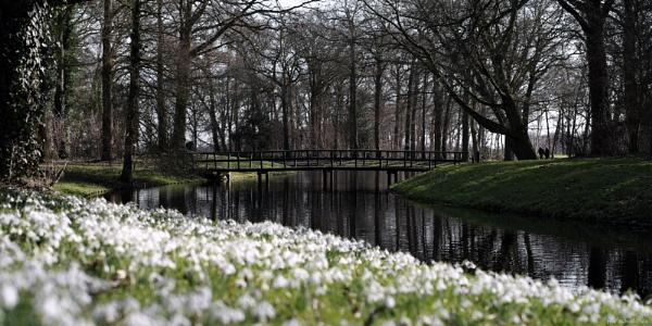 The Park by HarmanNielsen