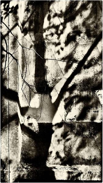 fence wall & shadows #2 by leo_nid