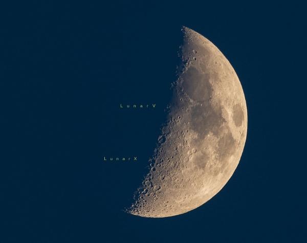 LunarX and LunarV by TDP43