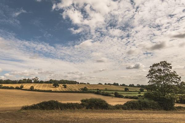 Essex by Silverlake
